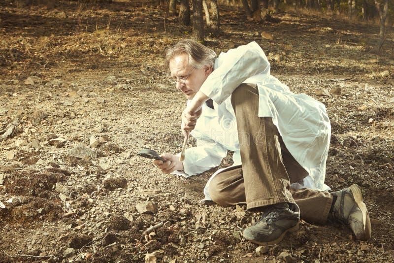 Stary badacz zakłada trylobit skamielinę na skalistej lokaci obrazy stock
