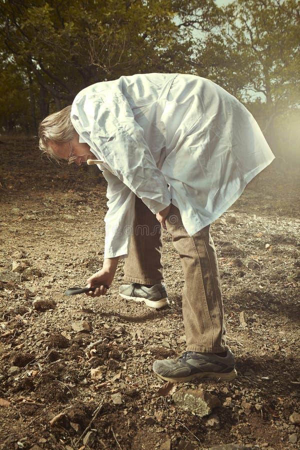 Stary badacz zakłada trylobit skamielinę na skalistej lokaci fotografia stock