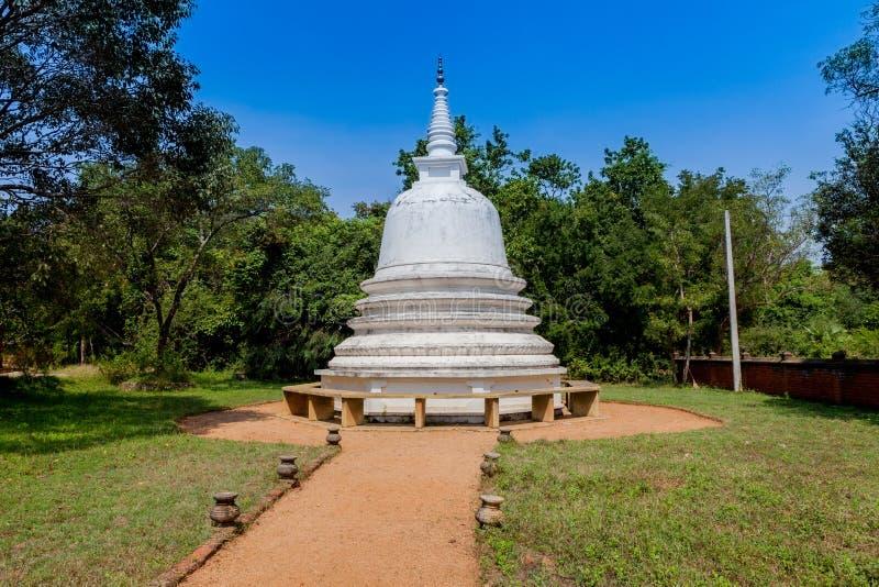 Stary biały stupy dagoba w Anuradhapura, Sri Lanka obraz royalty free
