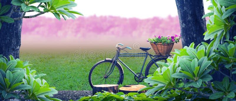 Stary bicyklu park zdjęcia stock