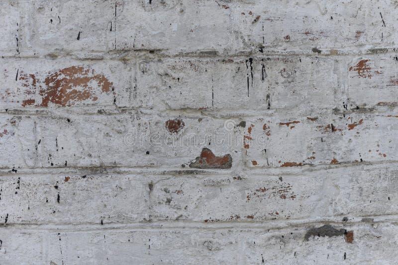 Stary biel z grubsza tworzył ściana z cegieł malującego białego tynk, zakończenie w górę, kopii przestrzeń obrazy stock