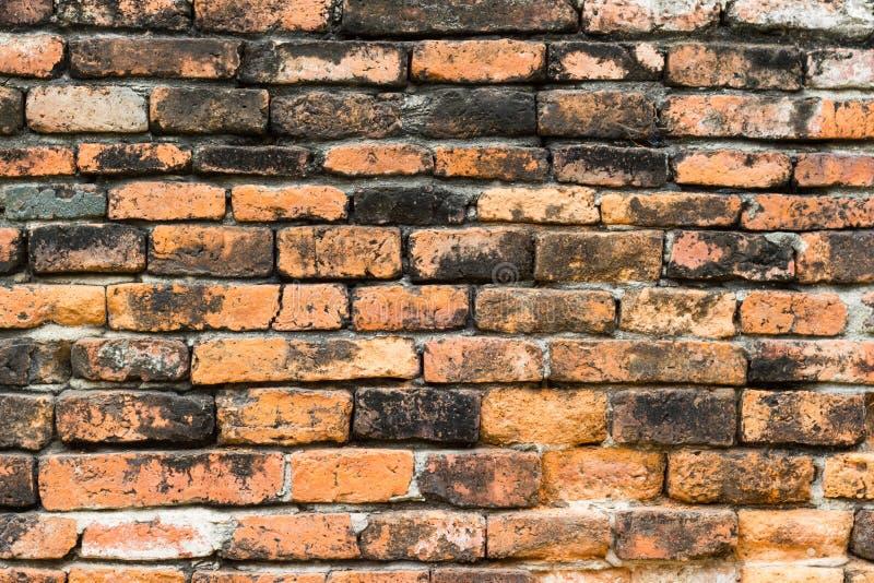 Stary brown ściana z cegieł fotografia royalty free