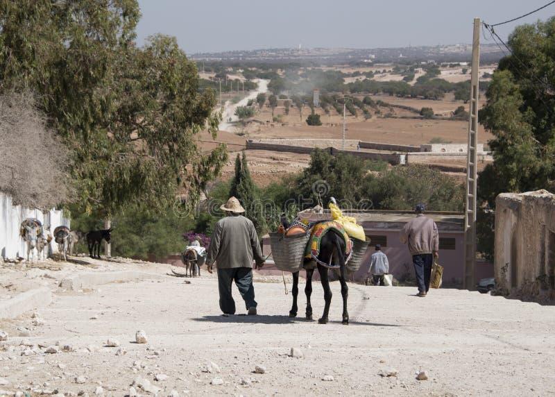 Stary człowiek prowadzi jego sklepu spożywczego pogrążonego osła zdala od tygodniowego berber rynku otwartego krótki sposób od Es fotografia stock