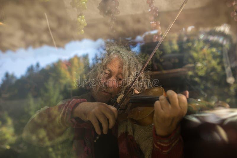 Stary człowiek z długie włosy bawić się skrzypce obraz stock