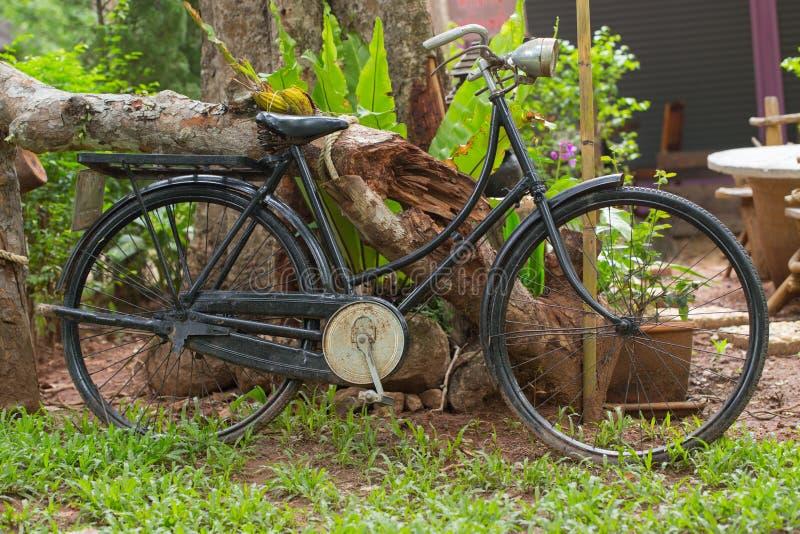Stary czarny rower w ogródzie zdjęcie royalty free