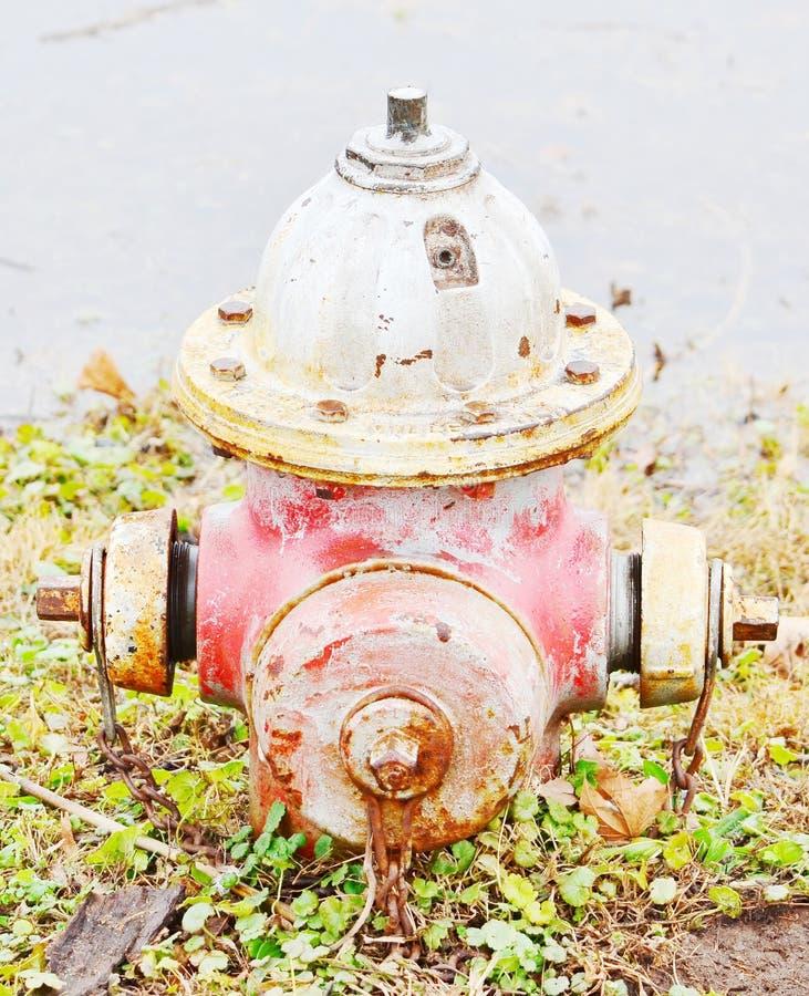 Stary czerwony pożarniczy hydrant zdjęcie royalty free