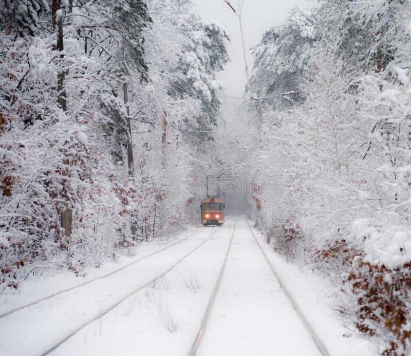 Stary czerwony tramwaj, opuszcza odległość przez śnieżystej lasowej Selekcyjnej ostrości obrazy royalty free