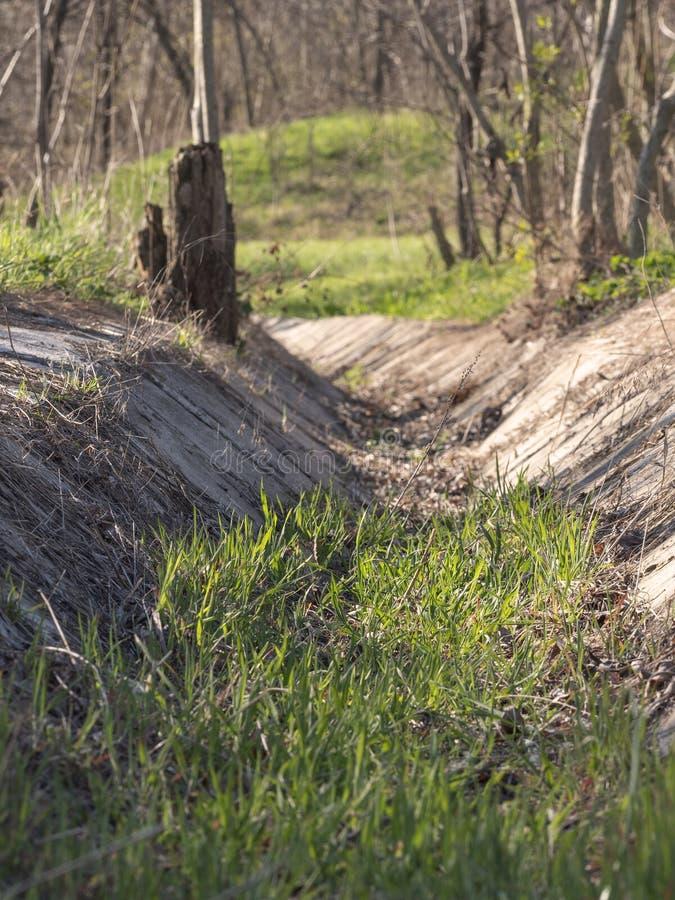 Stary deszczówka przykop przerastający z świeżą wiosny trawą na słonecznym dniu zdjęcia stock