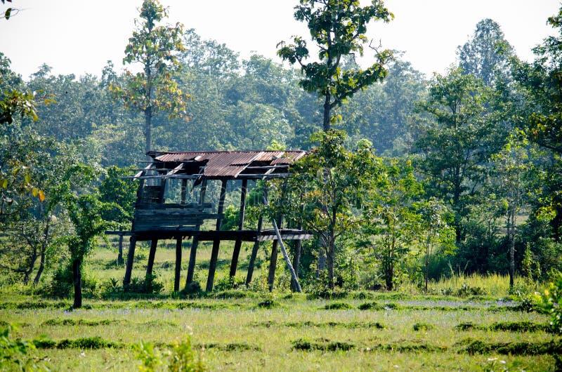 Stary dom Tajlandzki rolnik używał być schronieniem dla deszczu, unikać słońce gdy gospodarstwo rolne był biedny obrazy stock