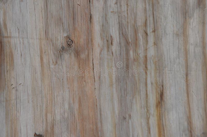Stary drewna ogrodzenie z wspaniałym kolorem obraz stock