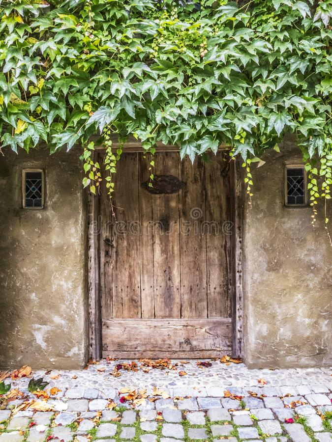 Stary drewniany drzwi porosły z pięcie rośliny budynkiem przy Durbuy, prowincja Luksemburg, Belgia fotografia stock