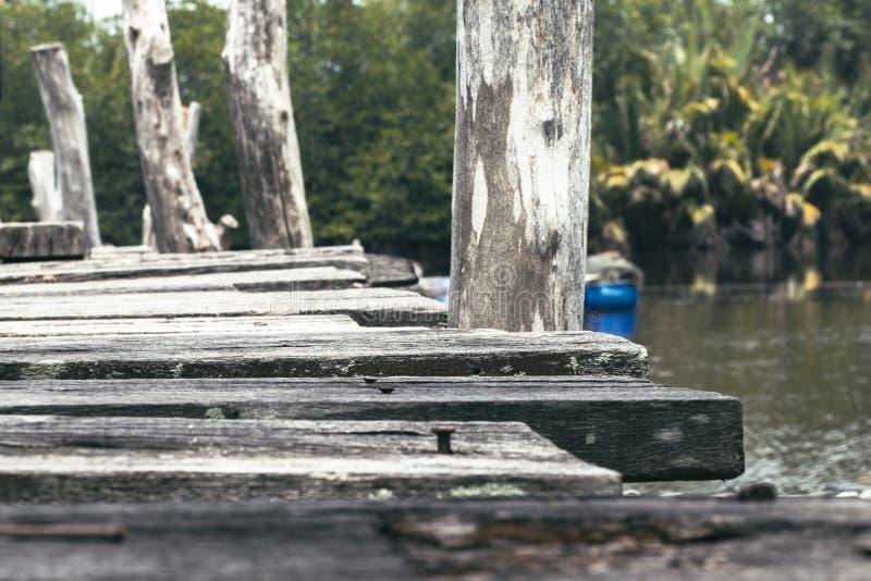 Stary drewniany jetty otaczający naturą przy słonecznym dniem zdjęcie stock