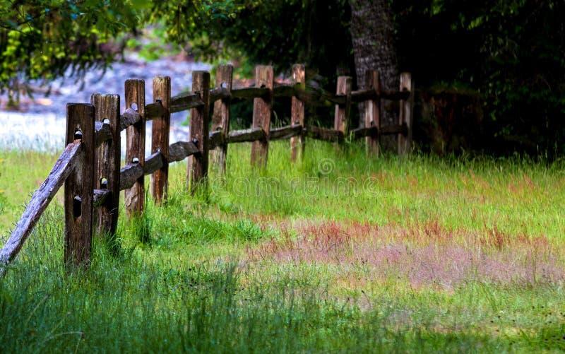 Stary drewniany kraju ogrodzenie w polu z trawą fotografia stock
