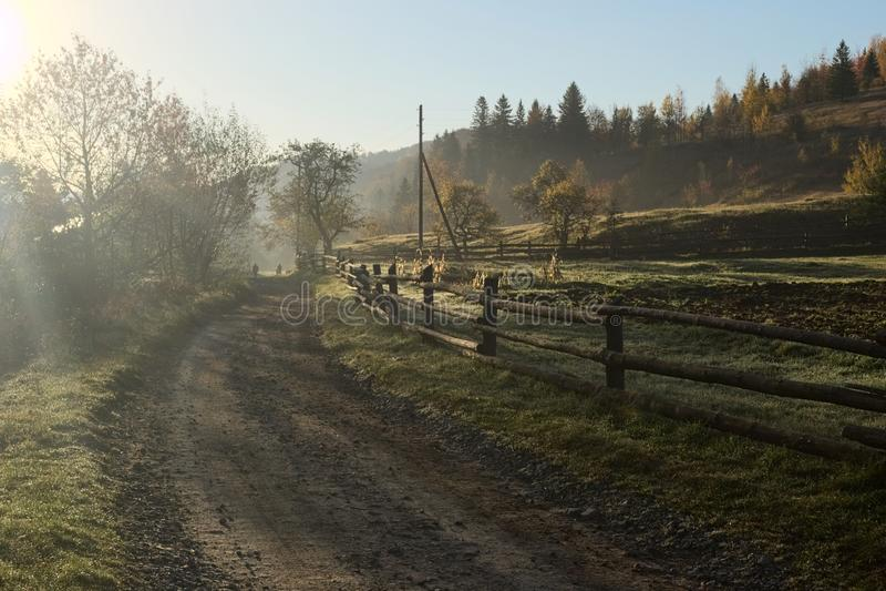 Stary drewniany ogrodzenie wzdłuż brud wiejskiej drogi w wczesnym jesień ranku zdjęcia royalty free