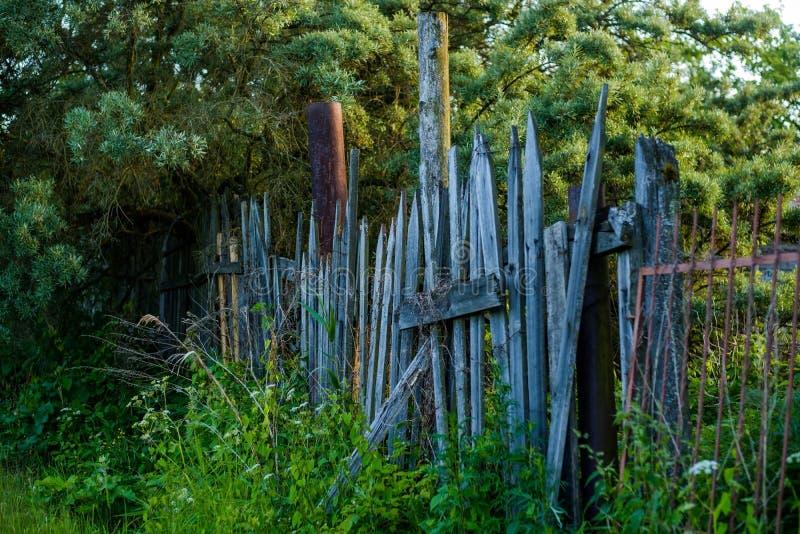 Stary drewniany ogrodzenie z trawą z zielonymi drzewami fotografia royalty free
