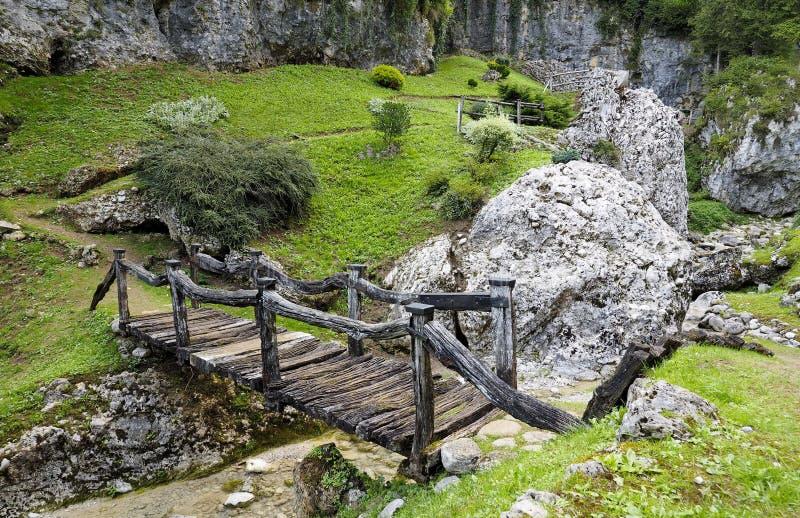 Stary drewno most zdjęcia royalty free