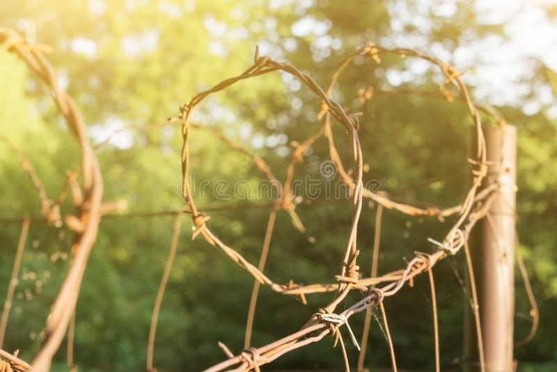 Stary drut kolczasty na ogrodzeniu, ochrona od złodziejów, drut kolczasty, iluminujący słońcem, piękny tło obraz stock