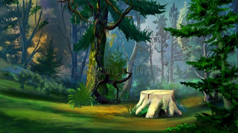 Stary Drzewny fiszorek w Świerkowym lesie royalty ilustracja