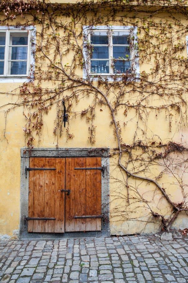 Stary drzwi w Europa zdjęcia royalty free