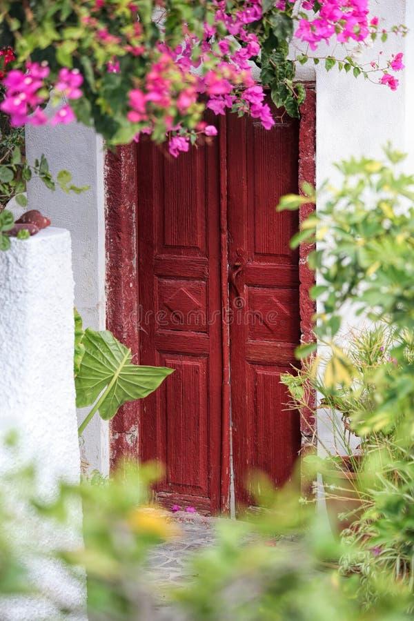 Stary drzwi z kwiatami w Oia wiosce na Santorini wyspie, Grecja fotografia royalty free
