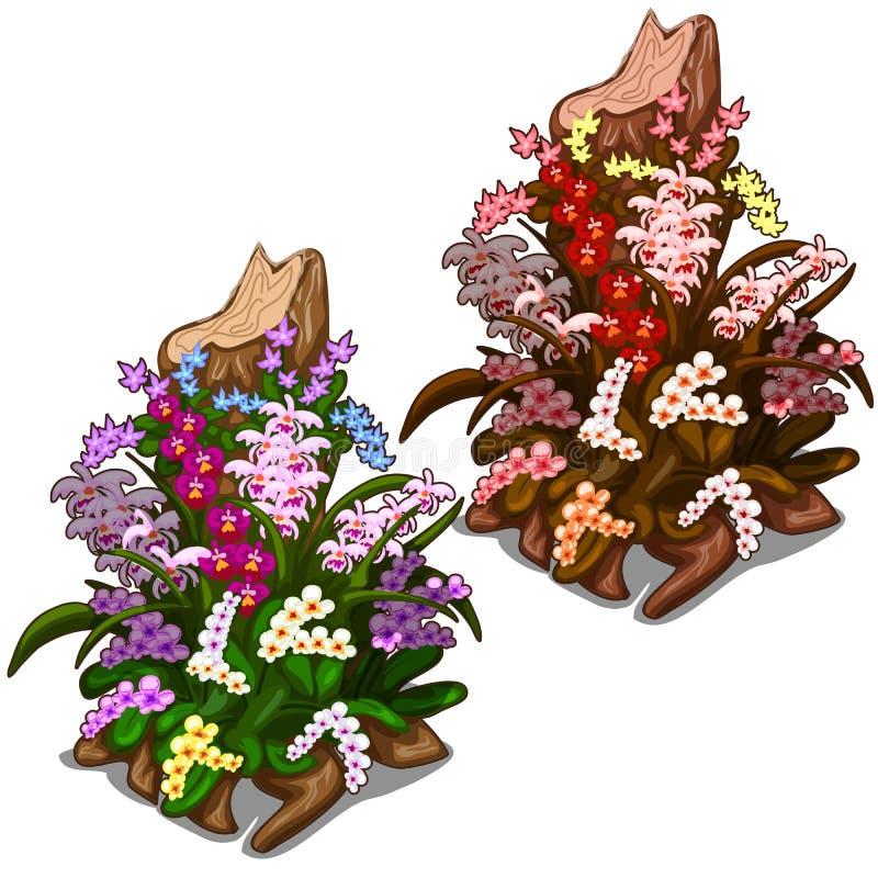 Stary fiszorek przerastający z colourful dzikimi kwiatami ilustracji