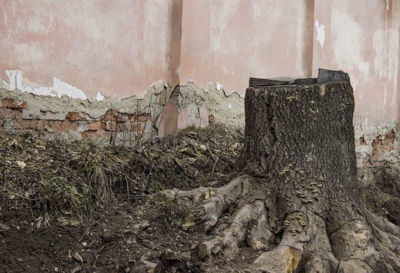 Stary fiszorek z krakingowym ściana z cegieł zdjęcia stock