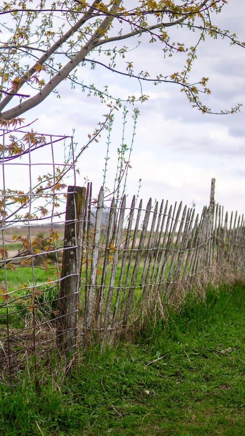 Stary gospodarstwa rolnego ogrodzenie fotografia stock