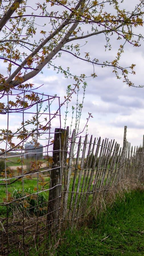 Stary gospodarstwa rolnego ogrodzenie zdjęcie royalty free