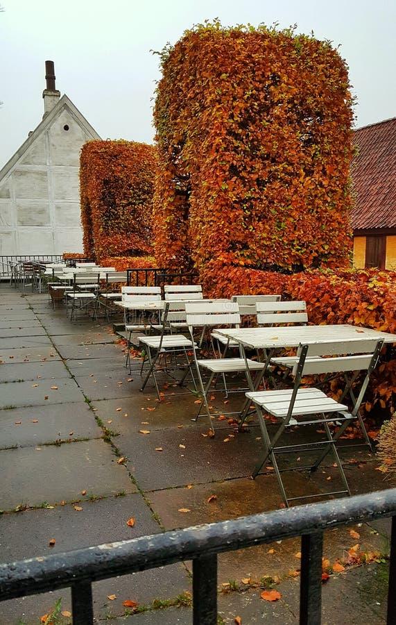 Stary grodzki plenerowy café, Aarhus Dani zdjęcie stock