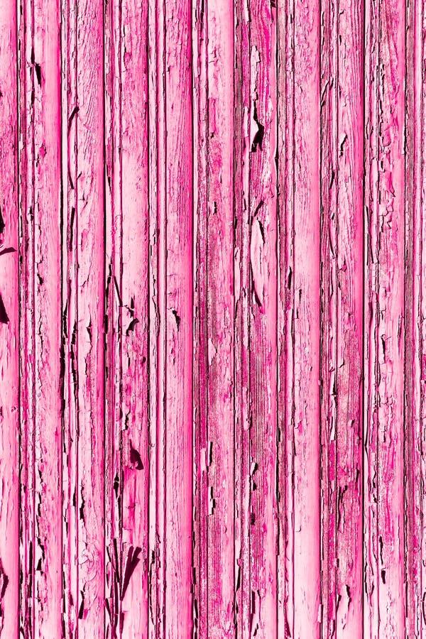 Stary grunge i wietrzejąca różowa drewniana ściana zaszalujemy tekstury tło fotografia royalty free