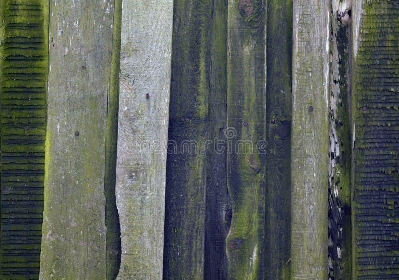 Stary grungy drewniany deski tło obraz royalty free