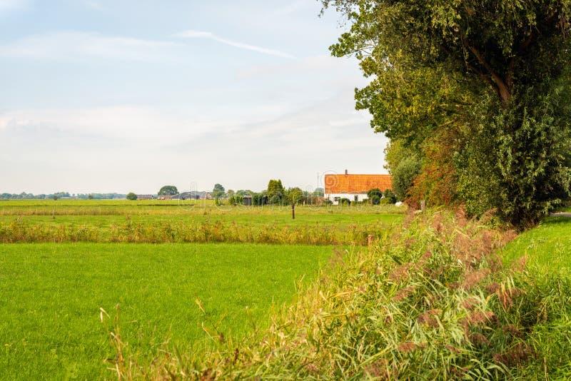 Stary Holenderski dom wiejski z pomarańcze taflował dach zdjęcie stock