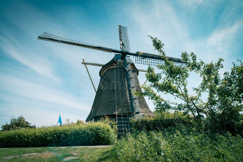Stary Holenderski wiatraczek, Amsterdam De Riekermolen, Amstelpark, Amstel rzeka zdjęcia stock