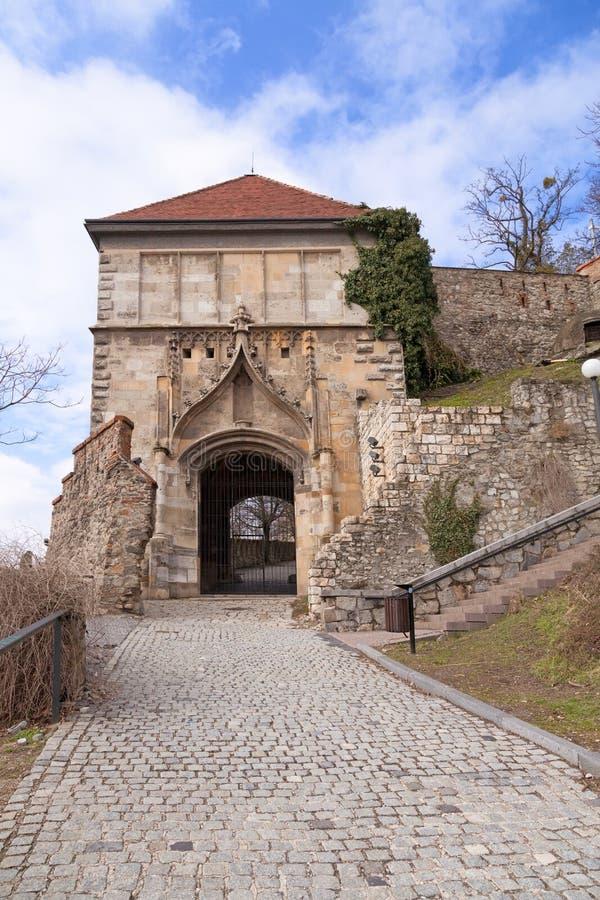 Stary Hrad - ancient castle stock photos