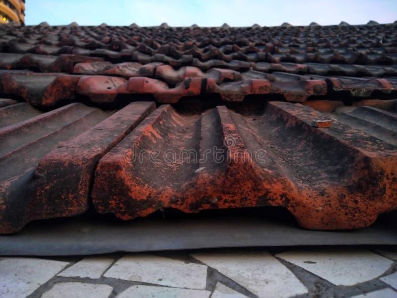 Stary I Brudzący upadał ciemnego brązu glinianego dachówkowego dach fotografia stock