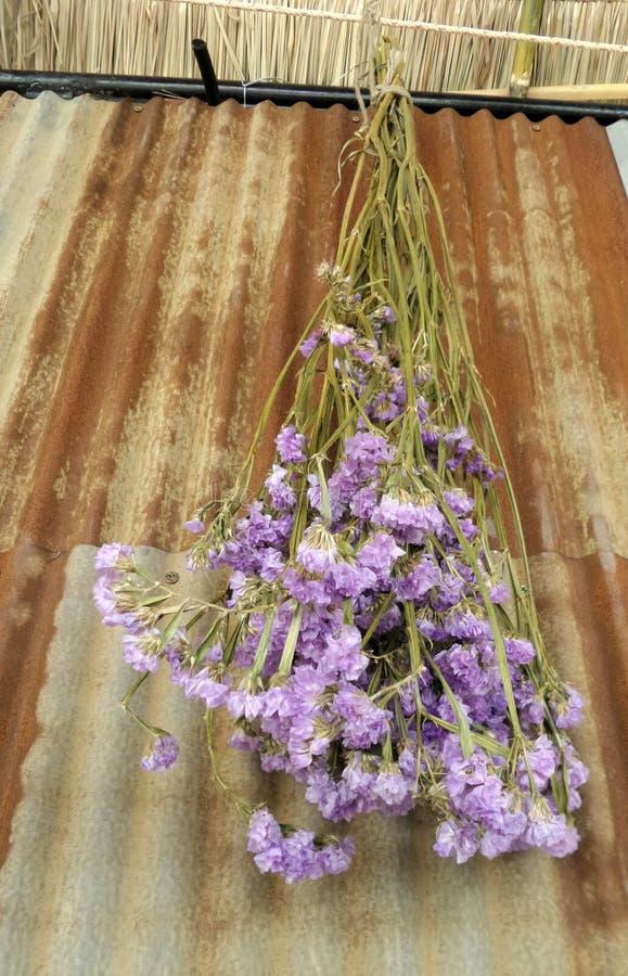 Stary i ośniedziały galwanizuje ścianę i suszy kwiatu bukiet obrazy stock