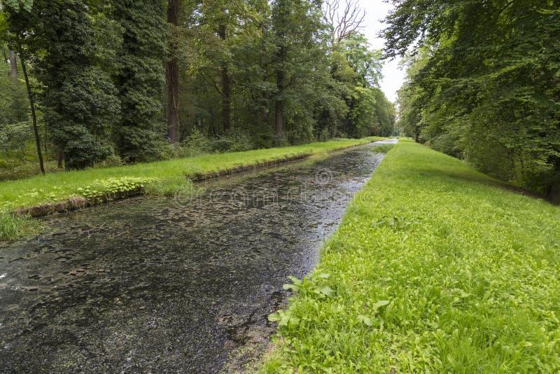 Stary jawny park Schoenbusch Schönbuch Grodzki Aschaffenburg, Niemcy obrazy stock