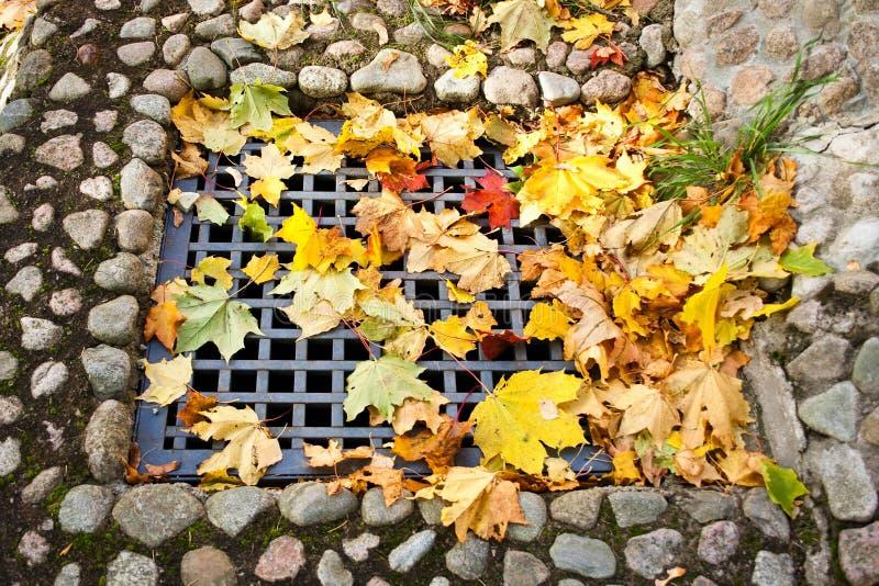 stary jesień miasto fotografia royalty free