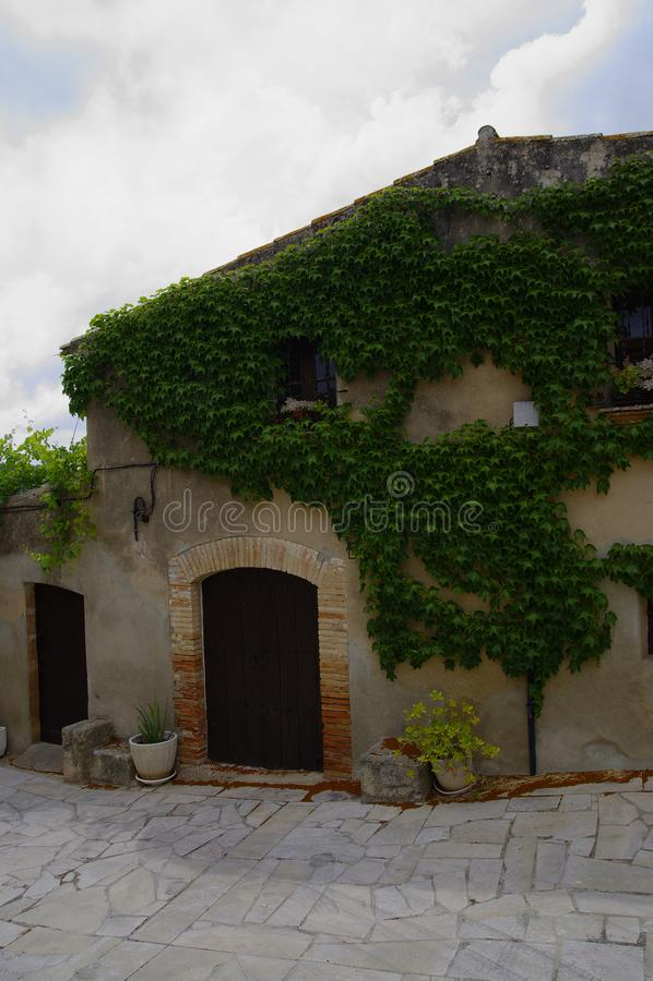 Stary kamienia dom przerastający z zielonymi winogradami Catalonia, Hiszpania zdjęcie stock
