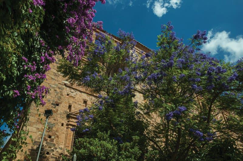 Stary kamienny budynek i drzewa z kolorowymi kwiatami przy Caceres fotografia stock