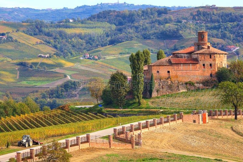 Stary kasztel i winnicy w Podgórskim, Włochy. obraz royalty free