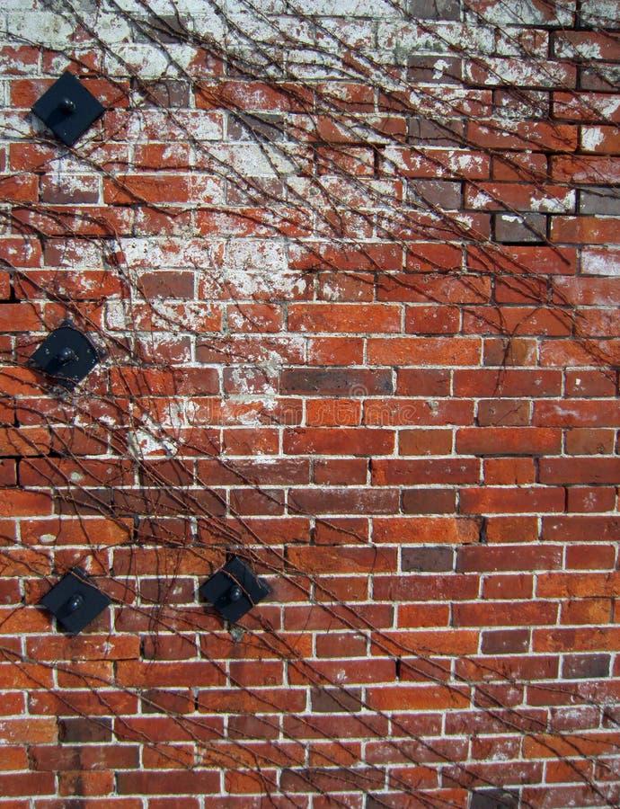 CZERWONEJ cegły magazyn zdjęcie royalty free