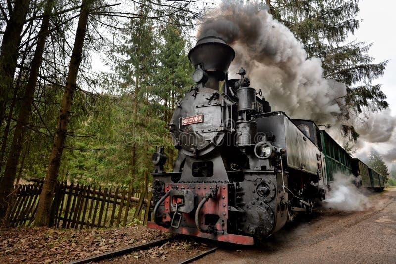Stary kontrpara pociąg Bucovina obrazy royalty free