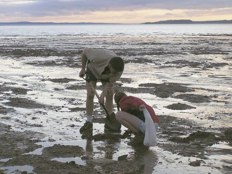Download Stary kopać zdjęcie stock. Obraz złożonej z milczek, plaża - 37040