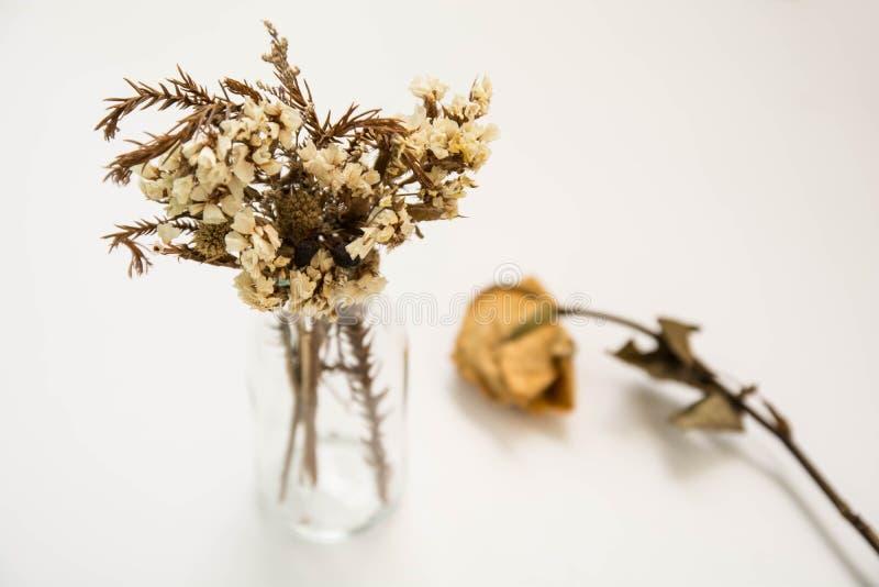 Stary kwiat w szklanej tubce z starym wzrastał beside zdjęcie stock