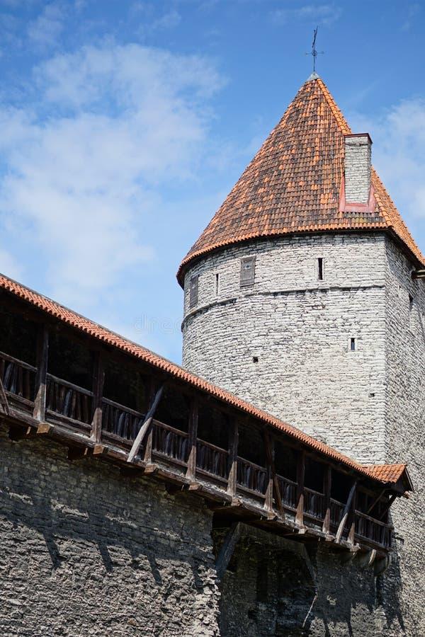 Stary miasteczko, Tallinn, Estonia obraz stock