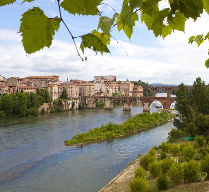 Stary most i zwrot rzeka z bluszczem nad nim w Albi obraz royalty free