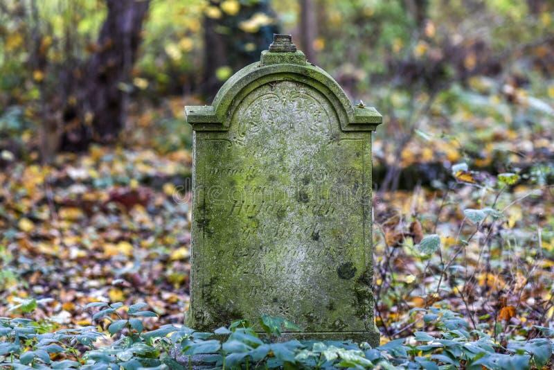 Stary Niemiecki gravestone w zamkniętym cmentarzu w Polska obrazy stock
