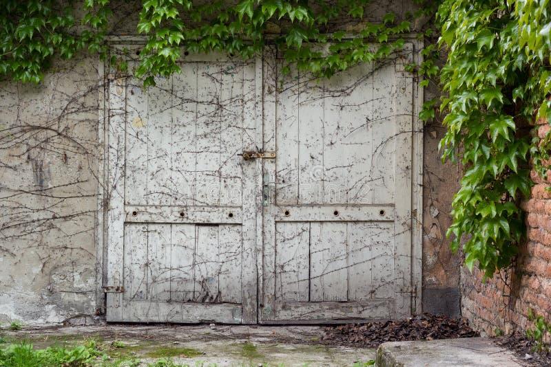 Stary nieociosany biały drzwi zdjęcia royalty free