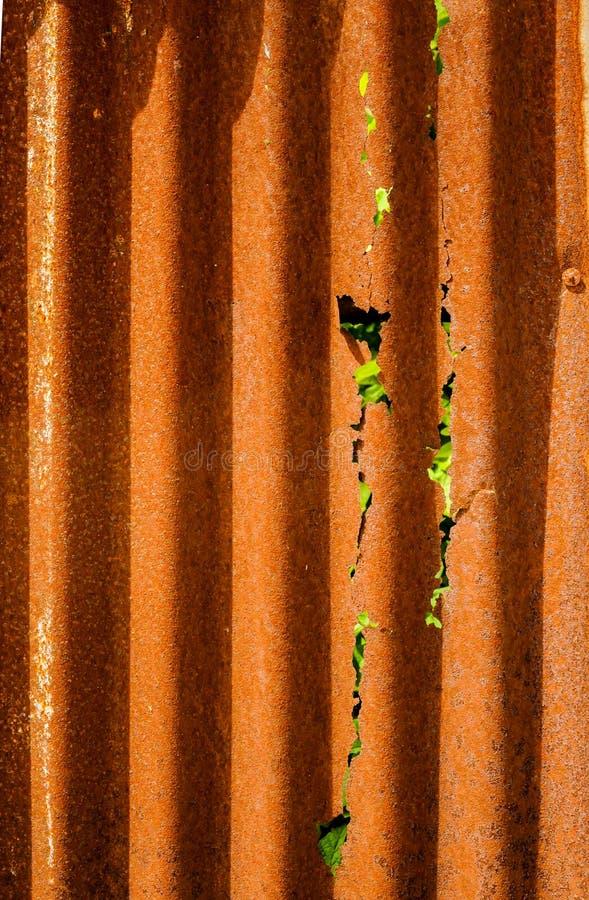 Stary ośniedziały cynku prześcieradła ogrodzenie jest grunge tłem ilustracja wektor